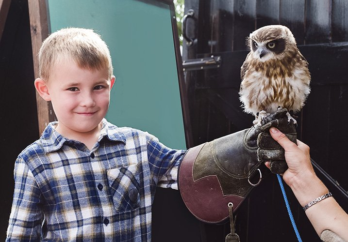 kid with an owl