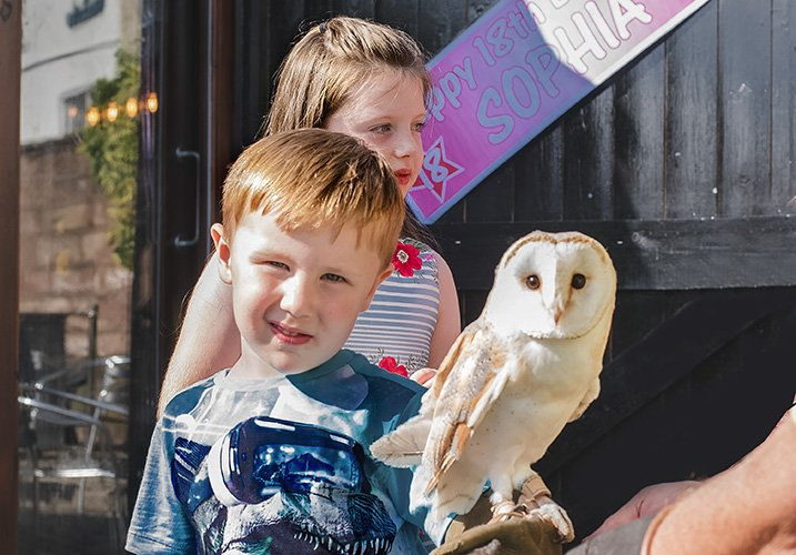 little boy holding a one year old barn owl