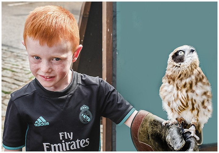 young boy holding an owl