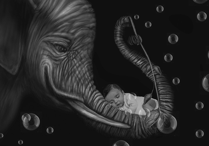 newborn and elephant