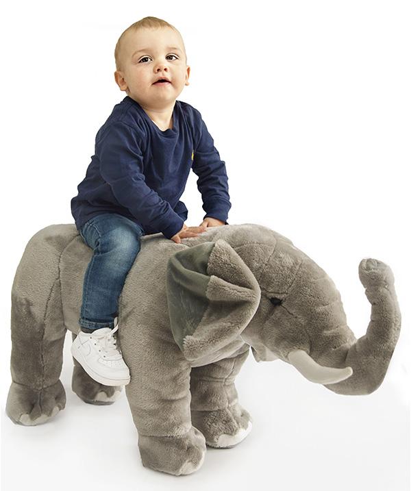 Boy sitting on his elephant