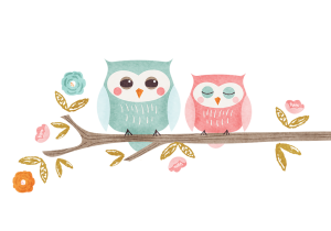 owls 300x210 - Girls Photoshoots